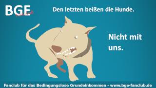 Hunde beißen - Bild größer - Download oder Link kopieren