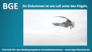 Luft unter Flügeln - Bild größer - Download oder Link kopieren