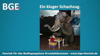 Schachzug Elefant - Bild größer - Download oder Link kopieren