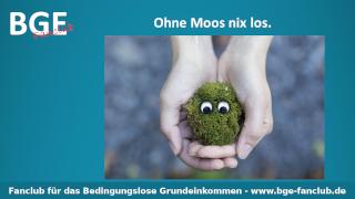 Moos nix los - Bild größer - Download oder Link kopieren