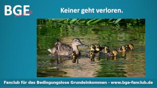 Verloren Ente - Bild größer - Download oder Link kopieren